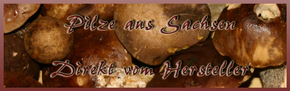 bio shiitake pilzzucht ca 3kg pilzbrut ballen selber pilze z chten ebay. Black Bedroom Furniture Sets. Home Design Ideas